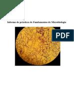 Prácticas de microbiología.doc