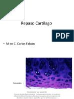 cartilago repaso