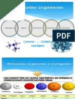 MolecOrganicas-2012-2013Propedeutico
