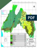 12.Mapa Forestal de La Cuenca Hidrografica Del Rio Chira.pdf