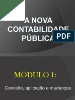 NOVA CONTABILIDADE PÚBLICA BRASILEIRA