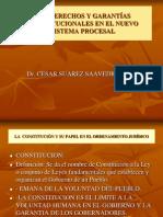 6 Derechos y Garantias Constitucionales Dr. Cesar Suarez