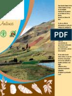 Guia de Cultivos Andinos