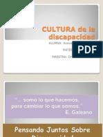 2 Discapacidad y Cultura 2.4
