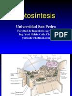 Fisiologia Vegetal  Fotosintesis Fase Luminosa