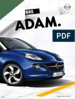 ADAM_13.5