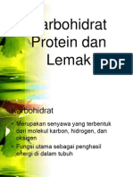 Karbohidrat Protein dan Lemak.ppt