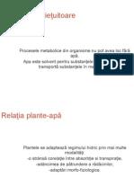 Relatia biotop - biocenoza