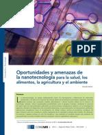 Nanotecnologia Riesgos de NT