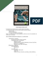 pdffile1