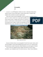 Factori ai degradării terenurilor