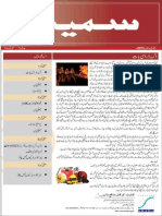 Smeda News Letter2013urdu
