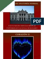 CORAZÓN II