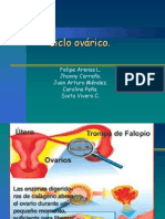 ciclo ovarico