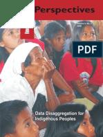Data Disaggregation for Indigenous Peoples