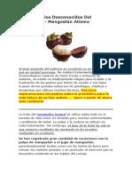 Los Beneficios Desconocidos Del Mangostán