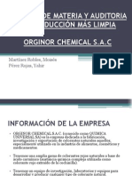 AUDITORIA DE PRODUCCIÓN MÁS LIMPIA (2)