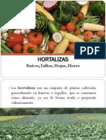 5 Hortalizas 2013