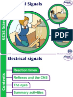 5.ElectricalSignals