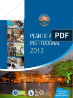 Plan de Acción Institucional 2013