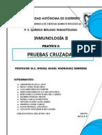 PRUEBAS CRUZADAZ