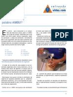 RCP_Que_sig_AMBU.pdf