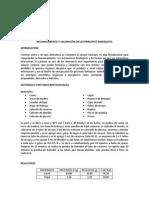 Reconocimiento y Valoracion de Los Principio Inmediatos (2)