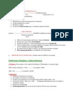 enzimas uno.doc