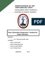62912901 Electrolitos Sanguineos Y Analisis de Gases Arteriales MONOGRAFIA