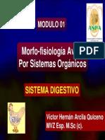Sistema Digestivo Aviar