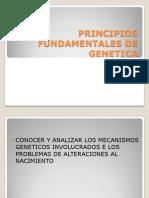 1_PRINCIPIOS_FUNDAMENTALES_DE_GENETICA.ppt