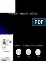 4 Aphycomplexas