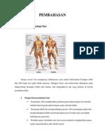 136706598 Anatomi Dan Fisiologi Otot Dan Tulang Pada Manusia