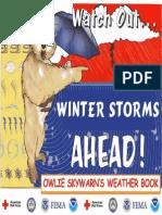 2006 Fema Owlie Skywarns-winter Storms Ahead 11p