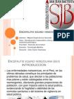 Encefalitis Equino Venezolana Diapositiva