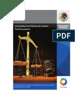 DGEPN-15LasPruebas Juicio Acusatorio Penal