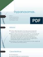 6 Enfermedades por Chagas tema .pptx