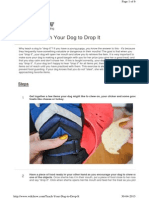 Teach Your Dog to Drop It