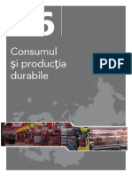 Consumul şi producţia durabile. State of the environment report No 1/2007. EEA (European Environment Agency) ; OPOCE (Office for Official Publications of the European Communities) ; 2007-10-10