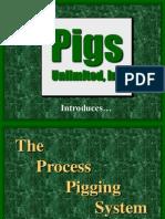 Process Pigging System