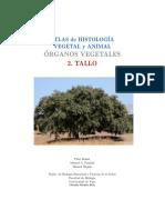 o-v-tallo.pdf