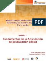 FUNDAMENTOS ARTICULACION -PARTICIPANTE