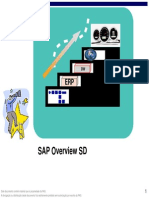 SAP Overview SD