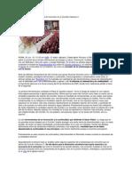 Benedicto XVI y la eclesiología de comunión en el Concilio Vaticano II.docx