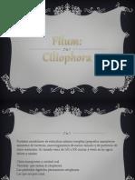 Ciliophora.pptx
