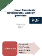 BIOMOLECULAS Estructura y Funcion
