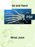 Bio Mechanics of the Wrist and Hand
