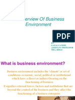 An Overview of Business Environment