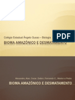 biomaamaznicoedesmatamento-100404212004-phpapp02