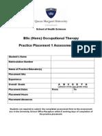 ADPP1 Assessment Report Form Final05042011 (4)